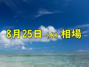 8月25日(水)相場のおさらい